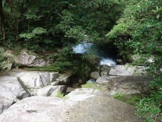 Un endroit désert dans la forêt de Shiratani Unsuikyo