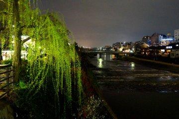 <p>버드나무와 강</p>