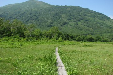 Mount Annupuri—the marsh is halfway up its eastern slope
