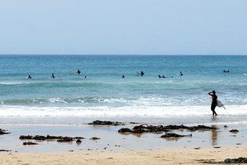 Захватывающие виды сёрферов и океана