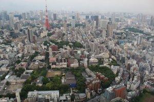 Views of Roppongi from the top of Roppongi Hills Mori Tower© & TM Lucasfilm Ltd.