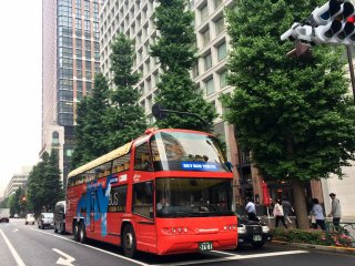 The Sky Hop Bus has 2 stories and customers can sit on the top floor and feel the breeze.