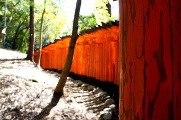 후시미 이나리 타이샤 (伏見稲荷大社)