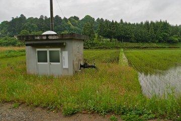 <p>Электрический водный насос, поливающий рисовые поля в округе</p>
