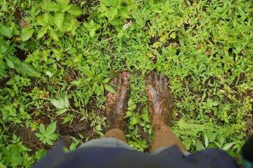 <p>Высаживание риса такое грязное занятие!</p>
