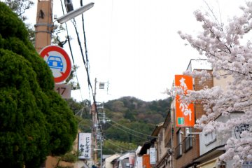 <p>긴카쿠지(은각사)로 가는 길! 인산인해...</p>