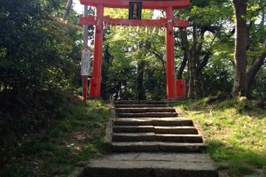 Another torii gate on the hike up the mountain