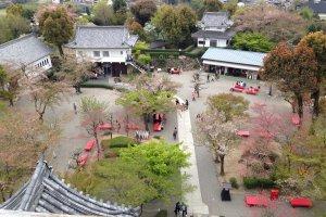 犬山城外的「本丸」空地都種滿了櫻花樹。不過我前往時已是花殘時份,櫻花都開始被綠葉取代了。