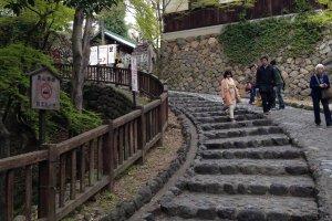 只需走大約5分鐘,登上石級後就到犬山城了