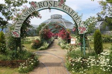 สวนกุหลาบ Hanaasobi