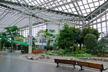 <p>Indoor garden next to the port tower - winter is that bad here?</p>