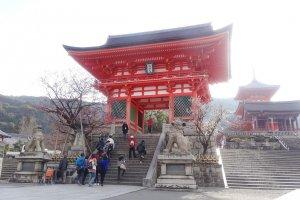 ประตูหลักที่ดูโดดเด่นของวัดคิโยะมิซุ-เดะระ กับต้นพลัมบานสพรั่ง