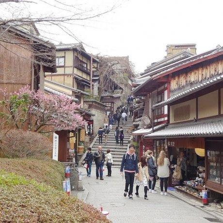 เดินเที่ยวชมเมืองเกียวโตเก่า