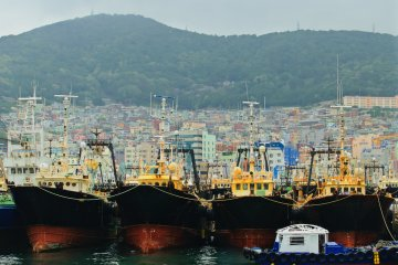<p>Trawlers waiting for the next shift</p>