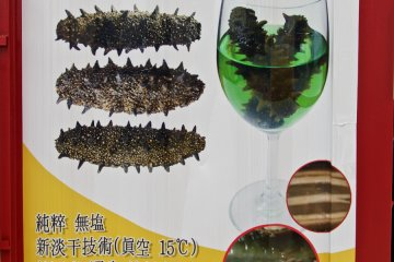 <p>Instant Sea Cucumbers - may the force be with you</p>