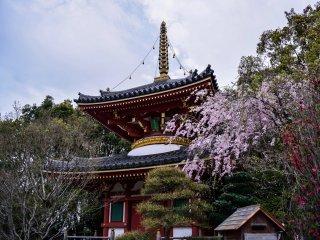 La pagode à deux étages du sixième temple