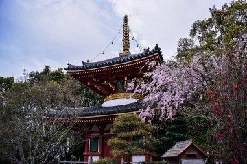 여섯 번째 사원에있는 2 층 탑