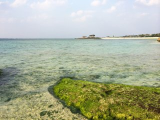 The beach features white-coral sands, which beautifully contrast the ocean, producing a sparkling green hue.