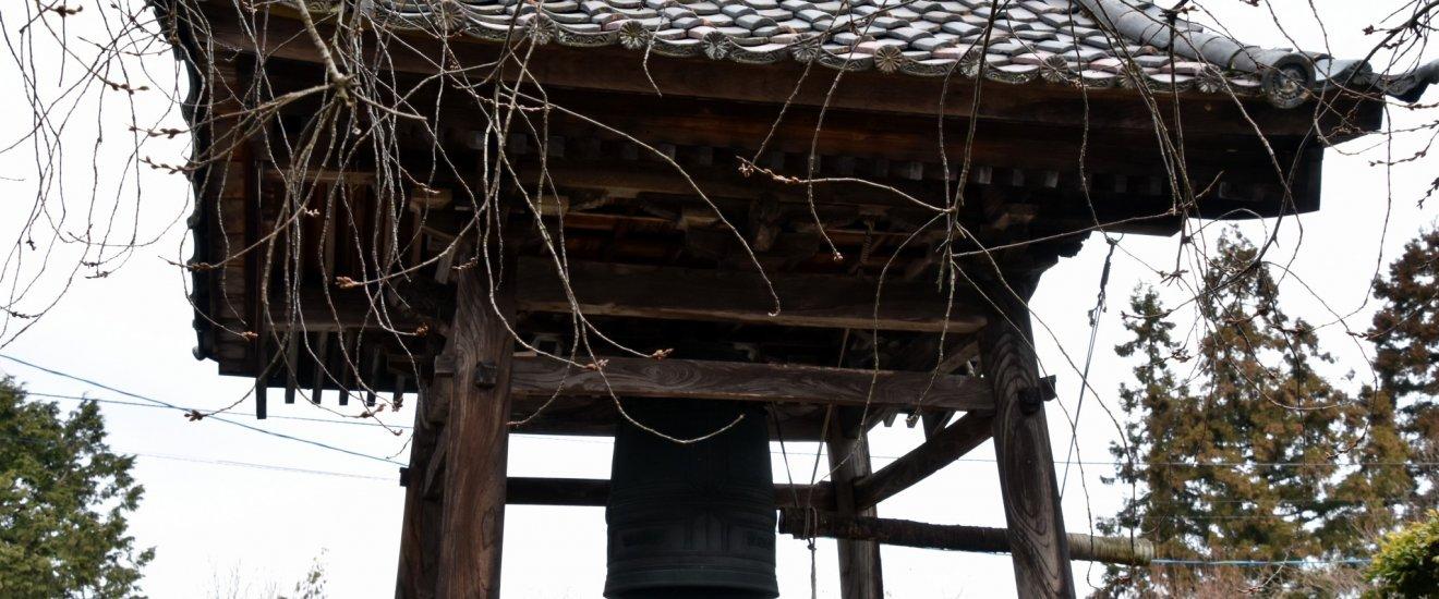 鐘楼と、未だ咲かぬしだれ桜の枝