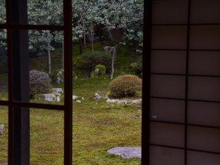 庭の奥に配された本尊石が見えるだろうか? 御成り部屋の床柱から礼拝石、本尊石が一直線に結ばれた作庭らしい。