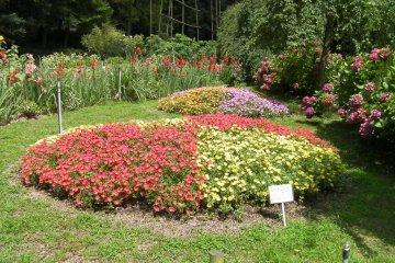 Vườn Thực vật Handayama