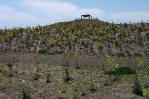 One of the manmade hills of the park used to break up the energy of a tsunami and as an evacuation point