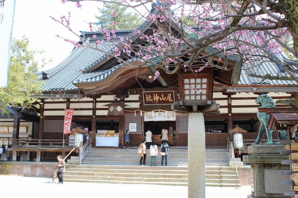 尾山神社本殿
