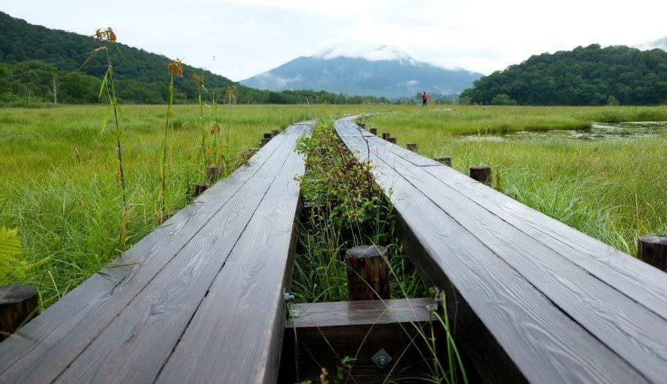 Jalur kayu yang basah terkena hujan
