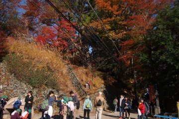 Популярное место для треккинга на горе Такао, которая , без сомнения, станет черной от количества людей , когда начнет День Горы, начиная с 18 час