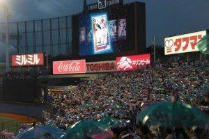 """Les fans des Tokyo Yakult Swallows célébrant un point de leur équipe avec leur célèbre """"dance des parapluies""""."""