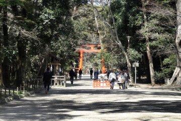 เรียนรู้เรื่องศาลเจ้าชินโต ที่ศาลเจ้าชิโมะกะโมะ