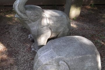 <p>Two elephants chilling in the upper garden</p>