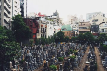<p>Right outside of Two Dog&#39;s there is a graveyard with a view of the cityscape of Roppongi&nbsp;</p>