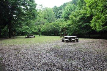 Tadao Park in Machida