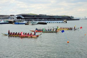 Races are made up of three teams – each boat contains 15–20 competitors.