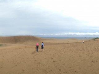 Hamparan pasir yang luas