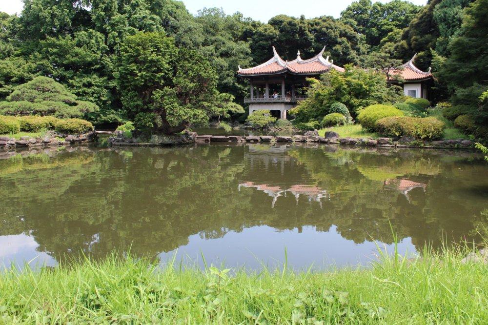 Shinjuku Gyoen is simply a prestigious and eminent park