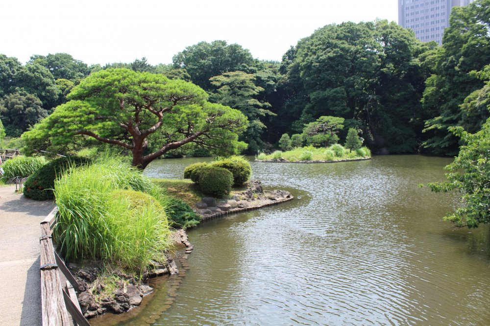The Japanese-style garden has many beautiful trees and ponds