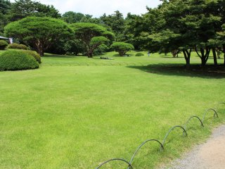 The grass is unbelievable green and is so inviting