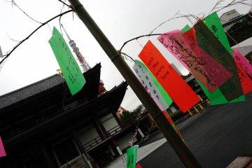 Tanabata Festival di Kuil Zojoji