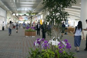 Naha Airport- First Impression