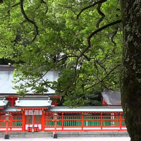 하야타마 사원과 거대한 성암