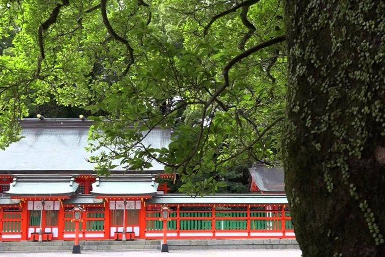 熊野速玉大社とゴトビキ岩