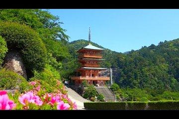 Nachi Shrine & Waterfall