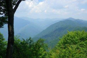 岩茸石山山頂からの眺め。奥武蔵・秩父の山々が見渡せる。
