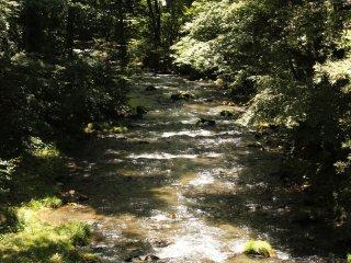 Dòng sông chảy qua nhà hàng