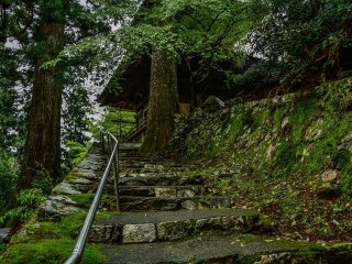 Stairs to the tower where Buddha statues are stored