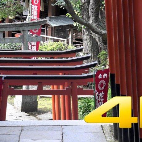 우에노 공원 #1