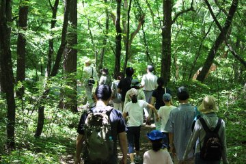 <p>A eco-tourism tour</p>
