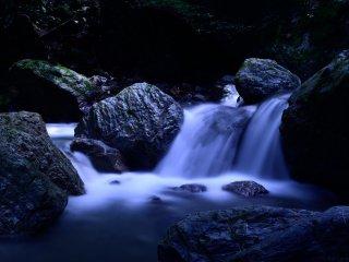 森の中を流れる小川